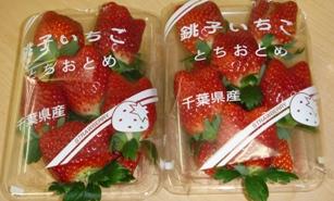 美味しい苺いかがですか1