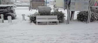 大雪です1